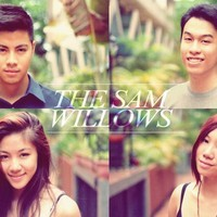 Sam Willows (Musical group)